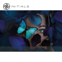 Walldecoration Blue Butterfly Matt Aluminum